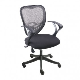 Cardic Low Back Chair